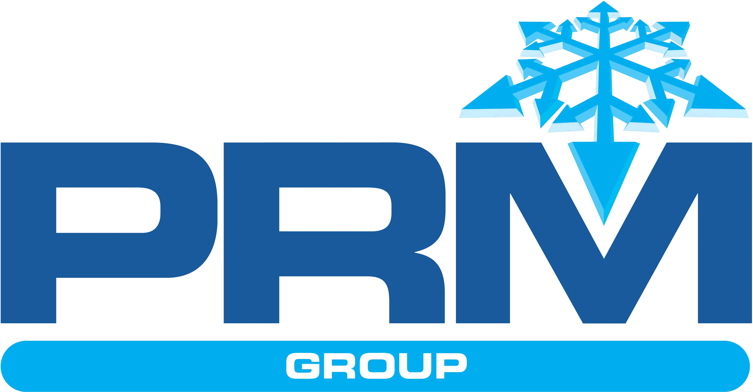 PRM Group logo
